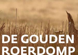 Gouden roerdomp-prijs voor Amstelglorie?