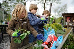 Kinderen aan het Wildkoken op Amstelglorie