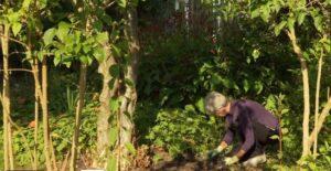 tuinieren op Amstelglorie